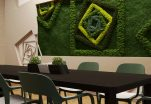 Green Walls in The Office: Benefits and Design Options